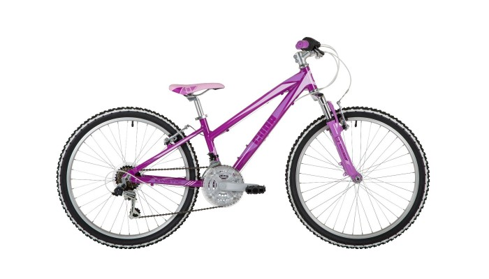 "Kinetic 24"" Purple"